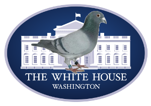 SimpeleDuif US WhiteHouse