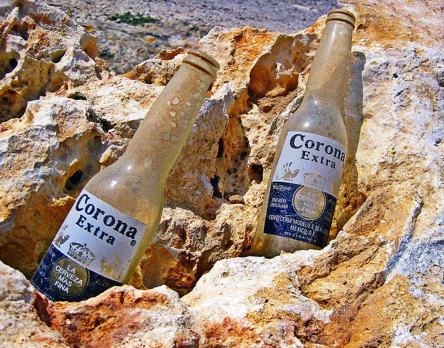 beer bottles empty corona dusty